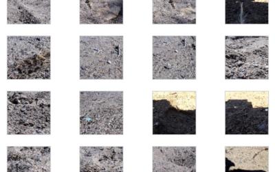 Tech Log #007: Imagery dataset gallery sample