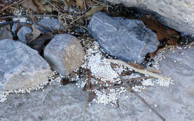 Field Log #002 – Polystyrene pieces everywhere
